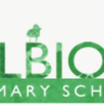 Primary and secondary schools using the Magic Link programme